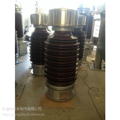 JDCF-66W2电压互感器
