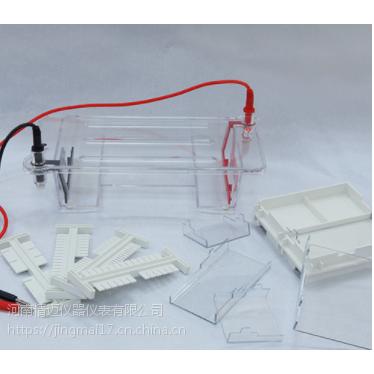 琼脂糖水平电泳仪(小号) 型号:DYCP-31DN型琼脂糖水平电泳仪(小号)