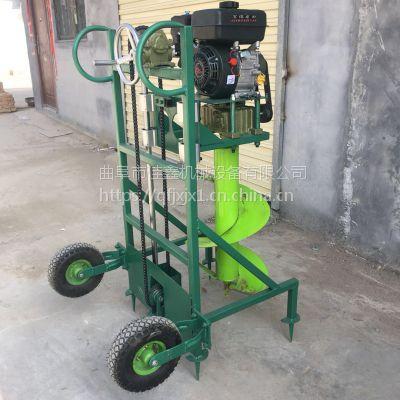 锰钢造林挖坑机 佳鑫手推钻眼机 大马力汽油钻地机价格