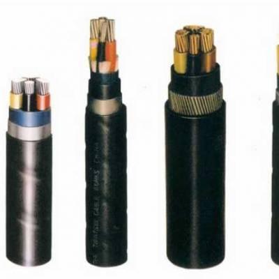 安徽长峰IA-YP2VWP-2 铜芯聚乙烯绝缘铜带分屏蔽及总屏蔽聚氯乙烯护套本安防爆防水集散型仪表电