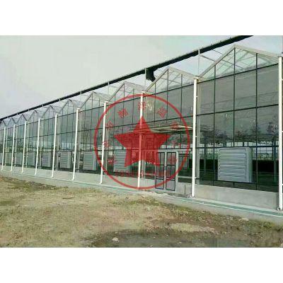 钢结构生态餐厅观光休闲采摘温室大棚建造价格——青州瀚洋温室