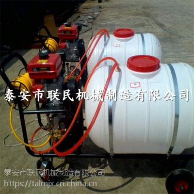 供应 400升手推式汽油打药机 联民牌喷雾机