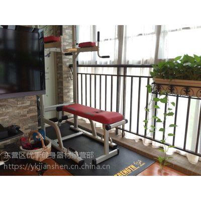 美国若赛引体向上器室内单双杠——东营若赛健身器材专卖店
