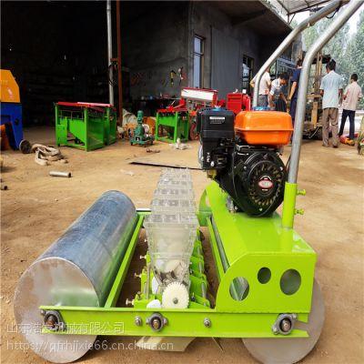 引式多功能播种机 省人工菜籽种植机