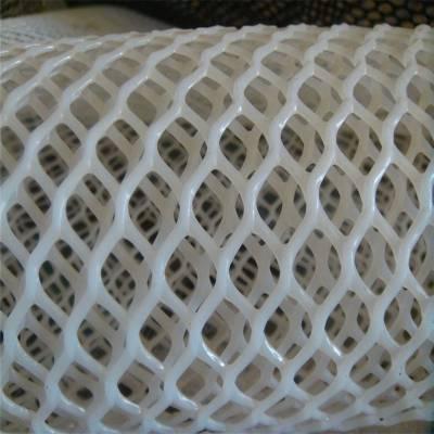 小鸡踩踏网 池塘养殖网 万能网塑料平网