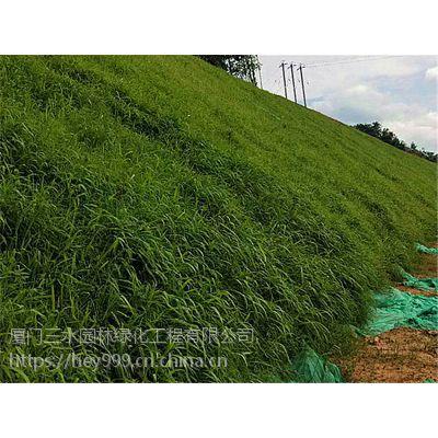 昆明地区边坡复绿全部选用狗牙根种子多少钱一个平方?