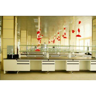 试剂架/食品无菌室/高效物理化学/医疗实验台