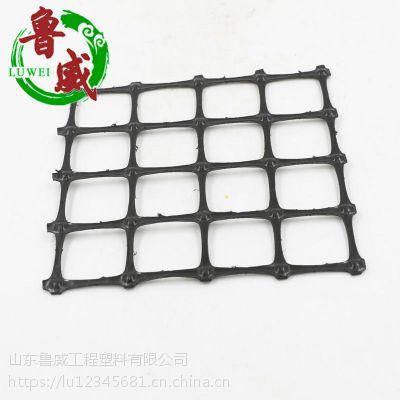 山东鲁威厂家直销塑料土工格栅 路基用单双向塑料土工格栅 量大从优