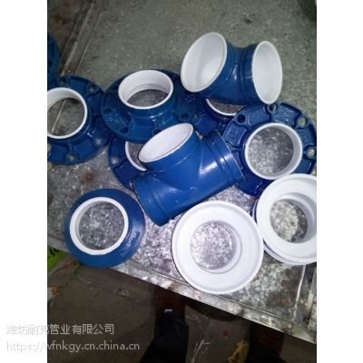 潍坊耐锐克DN100蓝色衬塑球墨铸铁大小头