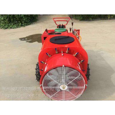 JLSM192果树柴油打药机,三轮式果园打药机工作效率高