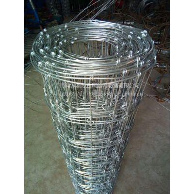 西宁围栏网多少钱一米/大量镀锌围栏网现货/本厂可做加工