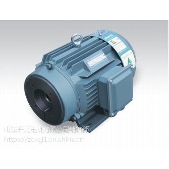 供应山东开元销售公司 三相异步电动机 160L-6-15kw 高效节能电机05