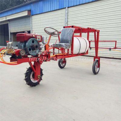 普航 手推式农用喷雾机 风送式喷药机厂家 果园打药机价格