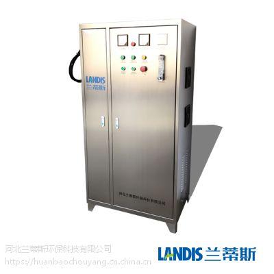 兰蒂斯臭氧发生器 水处理空气食品消毒机 臭氧杀菌机