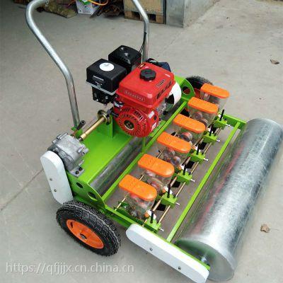 油菜谷子播种机 油菜籽种植机 金佳白菜香菜精播机