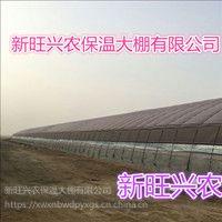 新旺兴农种植大棚8509热镀锌钢架大棚生产