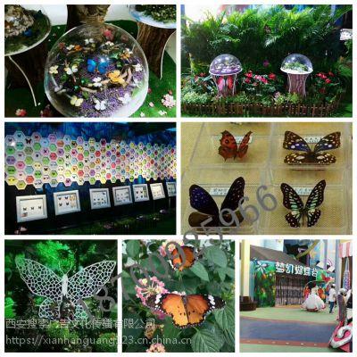 蝴蝶展品出租出售 蝴蝶标本制作礼品加工定制 蝴蝶展图片 放飞活体蝴蝶
