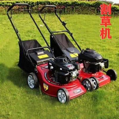 大厂家生产手扶割草机 汽油割草机 鼎诚品质