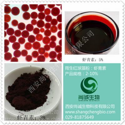 天然虾青素微囊粉2% 全溶 天然雨生红球藻粉 尚诚生物