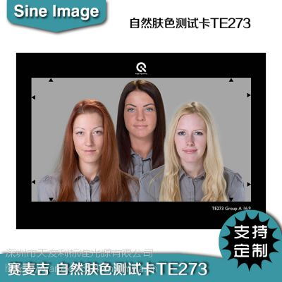 ESSER爱莎自然肤色测试卡TE273电子相机天然肤色再现评估chart图卡