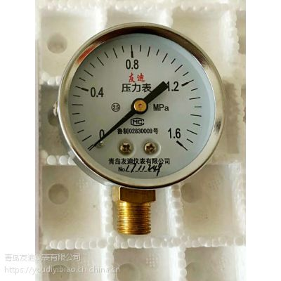 青岛友迪仪表Y-60正品压力表M14x1.5G1/4 ZG1/4 PT1/4 BSP1/4