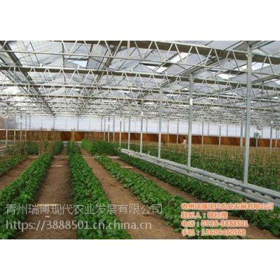 温室工程|新昌晟物产|国内温室工程