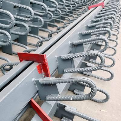石台县SF梳齿型桥梁伸缩缝#陆韵产品自动将灰渣排出伸缩间隙