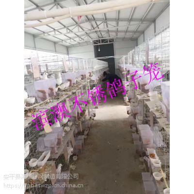 鸽笼价格 兔子笼价格 鸡鸽兔笼厂家大量批发销售 质优价廉