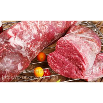 山水牛公司进广西肉牛养殖技术专业黄牛牛犊