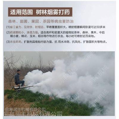 蔬菜大棚内打药机 一键启动喷药机 润丰大功率弥雾机