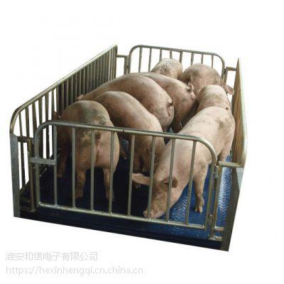 厂家直销宠物秤畜牧秤 3吨称猪称牛羊电子地磅 带围栏电子平台秤