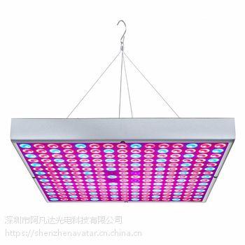 添光彩照明科技有限公司专业生产LED面板灯平板灯