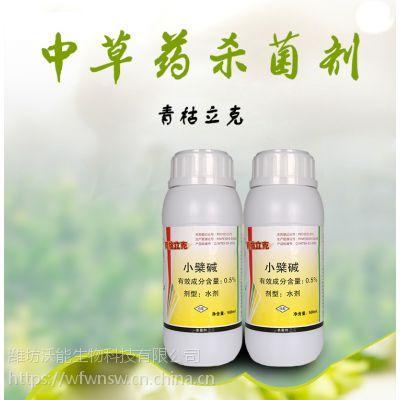 桃树根腐病用什么药,用青枯立克杀菌剂瓶装水剂厂家直销