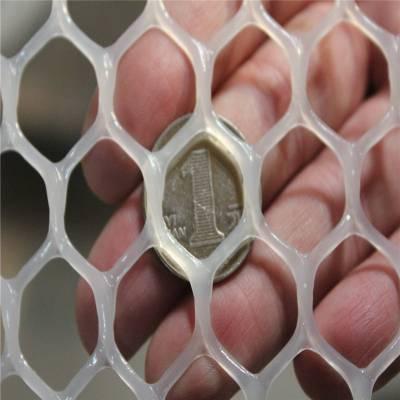 室内养殖铺垫网 散养鸡漏粪网 鱼塘养殖网