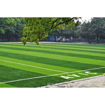 哈尔滨人造草坪|人造草坪规划