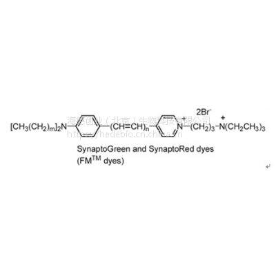 供应美国Biotium 神经末梢荧光染料 FM4-64