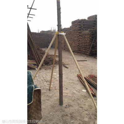 河北省杉木杆批发总部 北京天津唐山 长期供应2米 3米 4米杉木杆