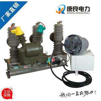 康良正品ZW32-12F/630A-20户外智能分界真空断路器,ZW32-12F型智能真空开关