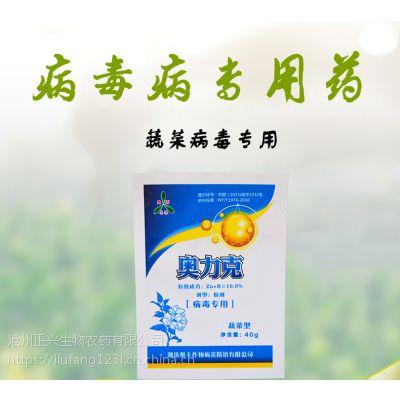 番茄TY、条斑、花叶病毒病的特效杀菌剂,粉剂