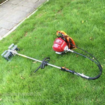 多功能汽油剪草机 手推式汽油割草机 打草机厂家