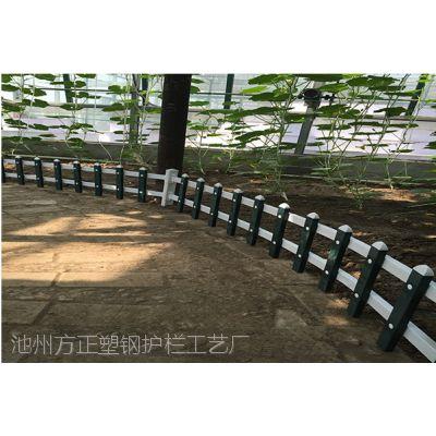 滁州市绿化护栏-pvc围栏-放心产品才好用
