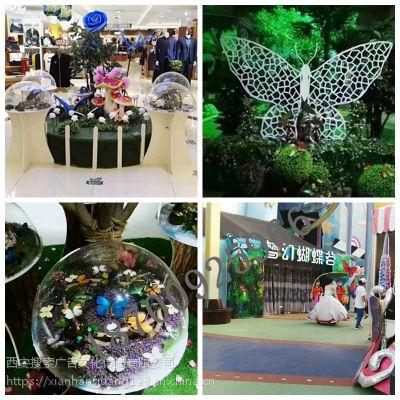 蝴蝶展展品出租出售 蝴蝶园承建 蝴蝶标本制作 礼品加工 活体蝴蝶图片