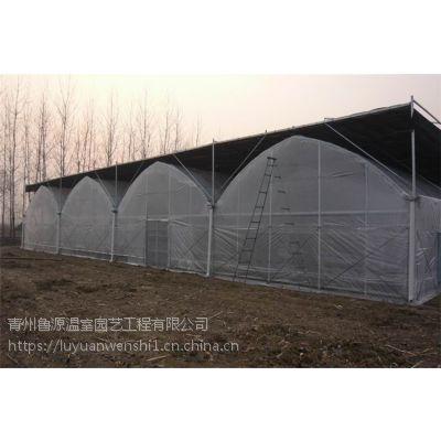 泰州 供应薄膜连栋温室大棚 施工厂家