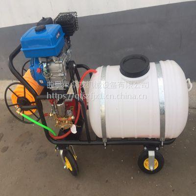 葡萄园打药机 手推式高压汽油喷雾机 果树农用喷雾器