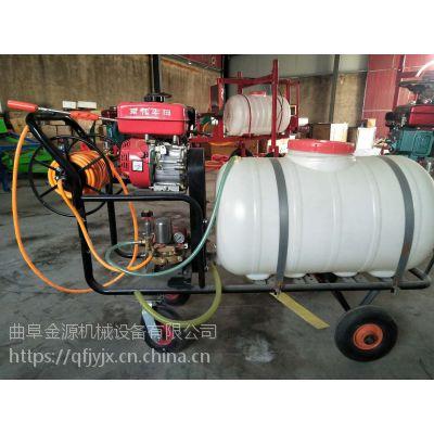 玉米稻田打药机 高效率汽油喷雾器厂家 金源