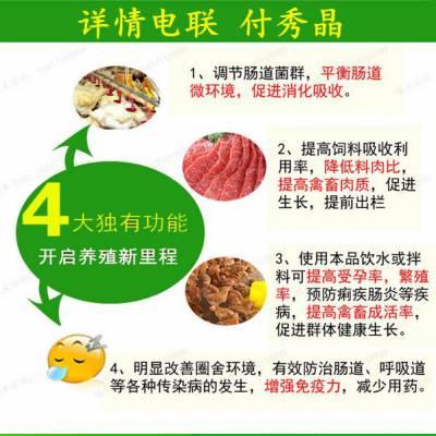鸭子吃的益生菌批发厂家防病调肠道除臭