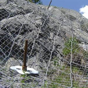 巨人边坡防护网,主动编织网,菱形孔爬坡防护网,结实耐用