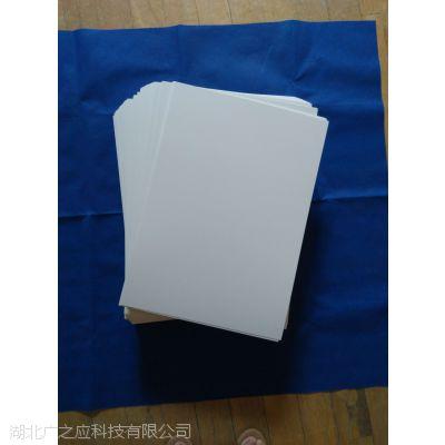 腊叶标本台纸
