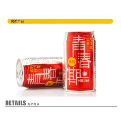 罗汉果饮料凉茶包邮青春期功能饮料去燥润喉广西土特产12罐装整箱促销