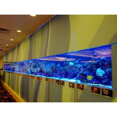 武汉哪里做大型鱼缸玻璃